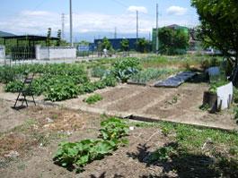 farm_07